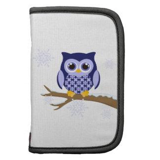 Blue winter owl organizers