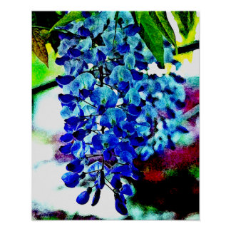Blue Wisteria Posters