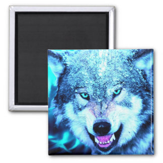 Blue wolf face 2 inch square magnet