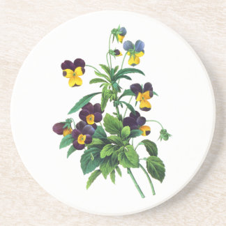 Blue Yellow and Purple Pansies By PJoseph Redoute Coaster