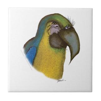 blue yellow macaw, tony fernandes ceramic tile