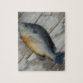 blue yellow purple teal, Bluegill fish on dock Jigsaw Puzzle