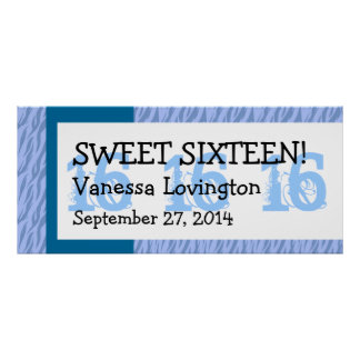 Blue Zebra Sweet 16 Celebration Gift Set Poster