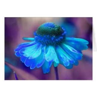 Blue Zinnia Flower Photography Card