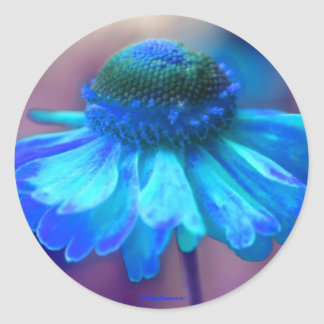 Blue Zinnia Flower Photography Sticker Label