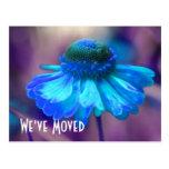 Blue Zinnia New Address Floral Postcard
