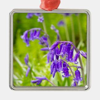 Bluebell 1.jpg metal ornament
