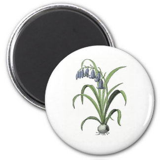 Bluebell 2 Inch Round Magnet