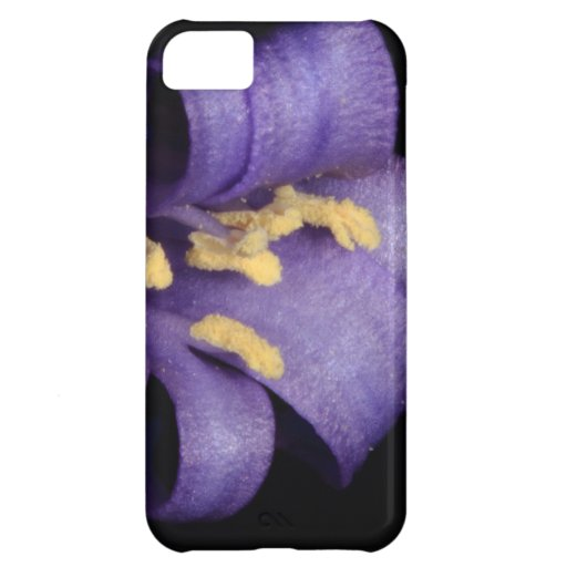 Bluebell Case For iPhone 5C