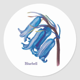 Bluebell Classic Round Sticker