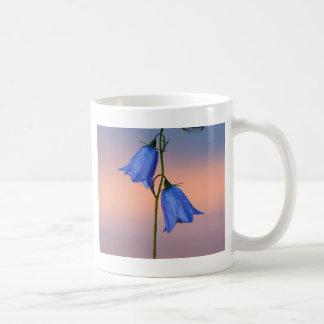 Bluebell flower at sunrise coffee mug