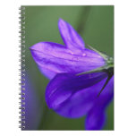 Bluebell flower in Independence Pass in Spiral Note Book