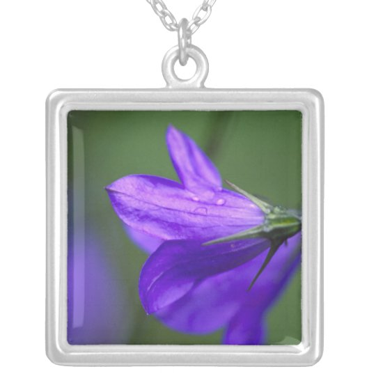 Bluebell flower in Independence Pass in Silver Plated Necklace