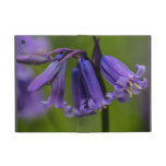 Bluebell Flower iPad Mini Cover
