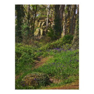 Bluebell Path Poster
