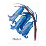 Bluebell Postales