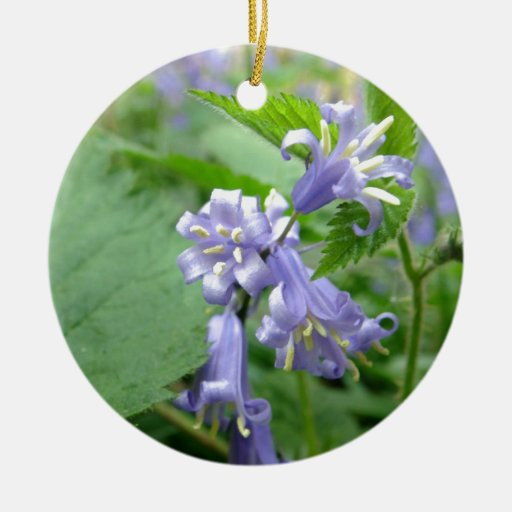 Bluebell - Trottiscliffe Country Park Double-Sided Ceramic Round Christmas Ornament