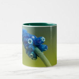 Bluebell Two-Tone Coffee Mug