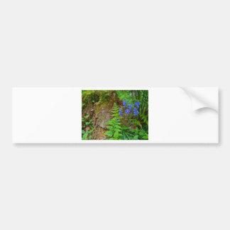Bluebell wood bumper sticker