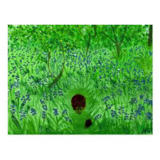 Bluebell Wood Hedgehogs Postcard