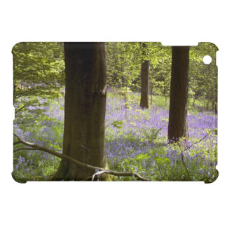 Bluebell Wood iPad Mini Cover