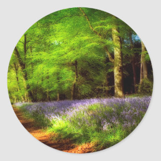 Bluebell wood round stickers