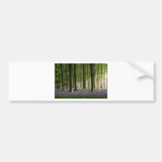 Bluebell Woodland Bumper Sticker