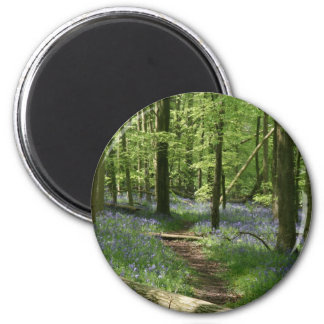 Bluebell woods 2 inch round magnet