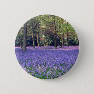 Bluebell Woods, England  flowers Button