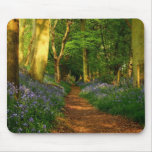 Bluebell Woods Mouse Pad