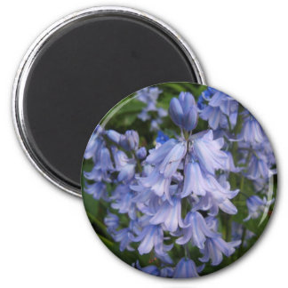Bluebells 2 Inch Round Magnet