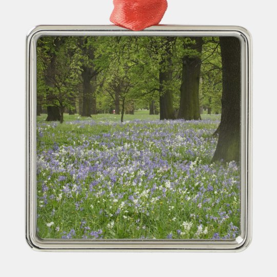 Bluebells and Oak Trees in Spring, Little Hagley Metal Ornament