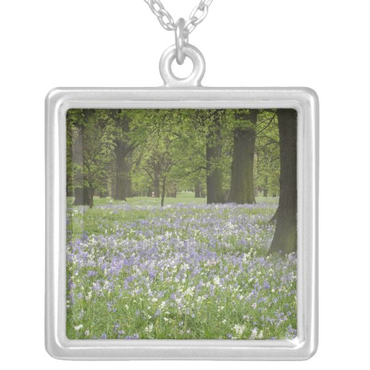 Bluebells and Oak Trees in Spring, Little Hagley Silver Plated Necklace