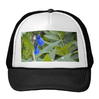 Bluebells and Raindrops Mesh Hats