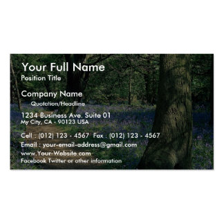 Bluebells and trees, Crackley Wood, Warwickshire Double-Sided Standard Business Cards (Pack Of 100)
