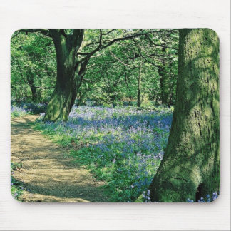 Bluebells and trees, Crackley Wood, Warwickshire Mouse Pads