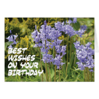 Bluebells Best Wishes Card