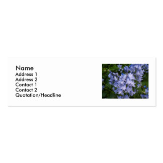 Bluebells Double-Sided Mini Business Cards (Pack Of 20)