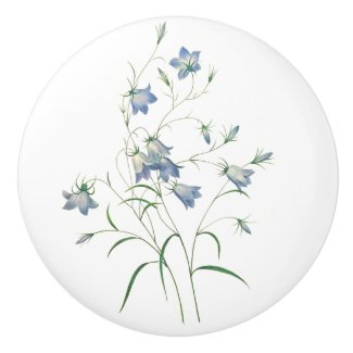 Bluebells by Redoute Botanical Art Round Knob