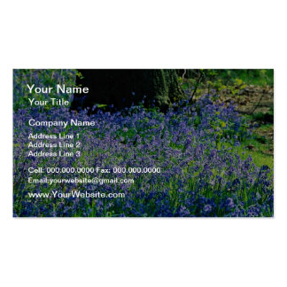 Bluebells, Crackley Wood, Kenilworth, Warks  flowe Double-Sided Standard Business Cards (Pack Of 100)