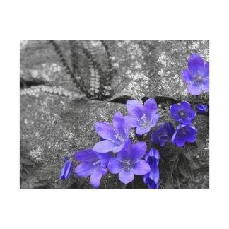 Bluebells en la cerca de la roca lienzo envuelto para galerias