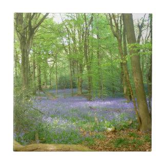 Bluebells en maderas azulejos