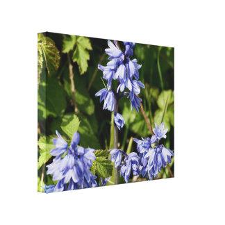 Bluebells en primavera impresión en lienzo