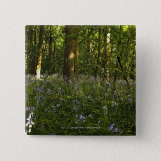 Bluebells In A Forest Button