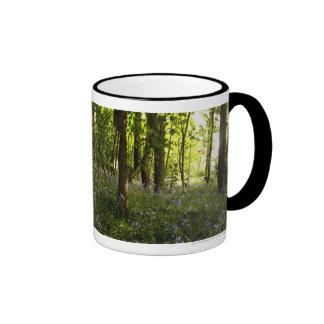 Bluebells In A Forest Mug