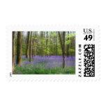 Bluebells in Brussels postage