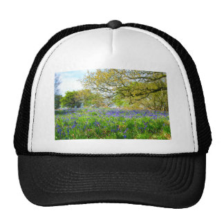 Bluebells in Launde Woods, Leicestershire Trucker Hat