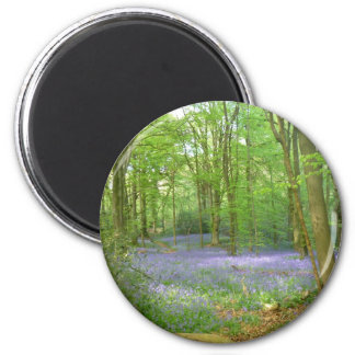 Bluebells in Woods 2 Inch Round Magnet