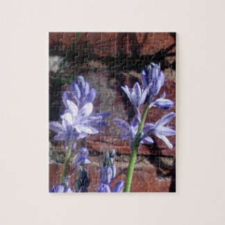 Bluebells ingleses puzzle con fotos