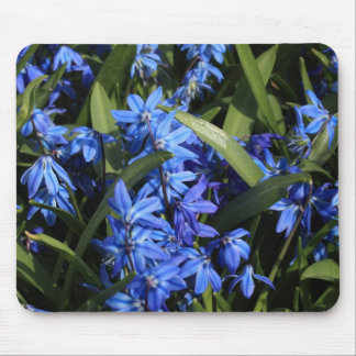 bluebells mouse pad